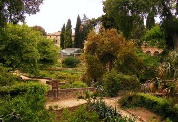 Le Jardin des plantes à Montpellier 2