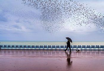 Jour de pluie