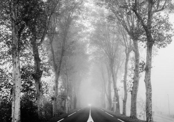 Le chemin se construit en marchant #15