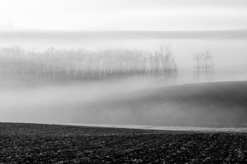 Brume obscure