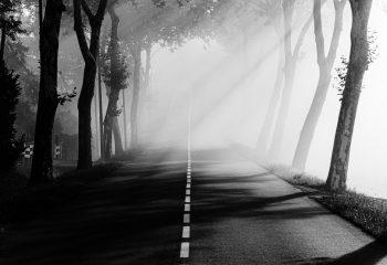 Le chemin se construit en marchant #16