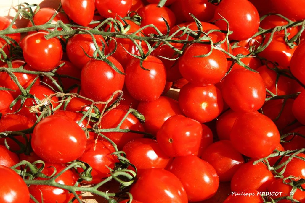 Philippe MERIGOT – Fruits Légumes