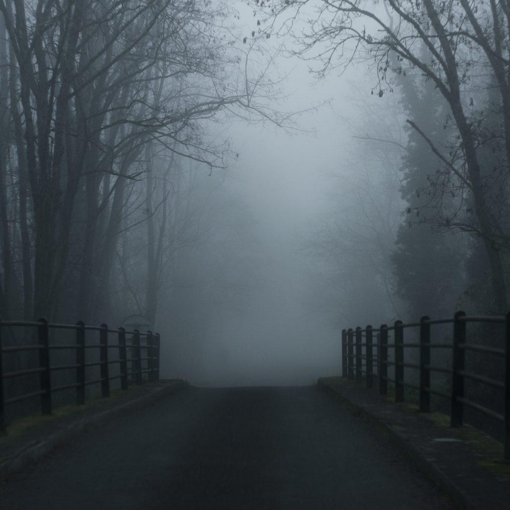 Misty dawn II
