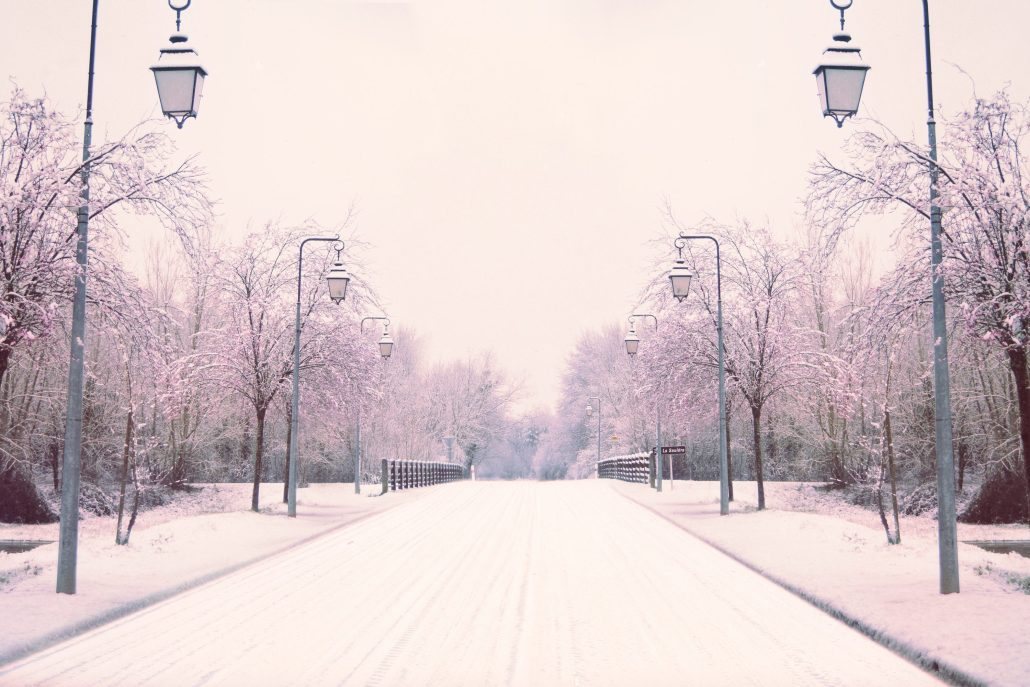 Un hiver en Sologne