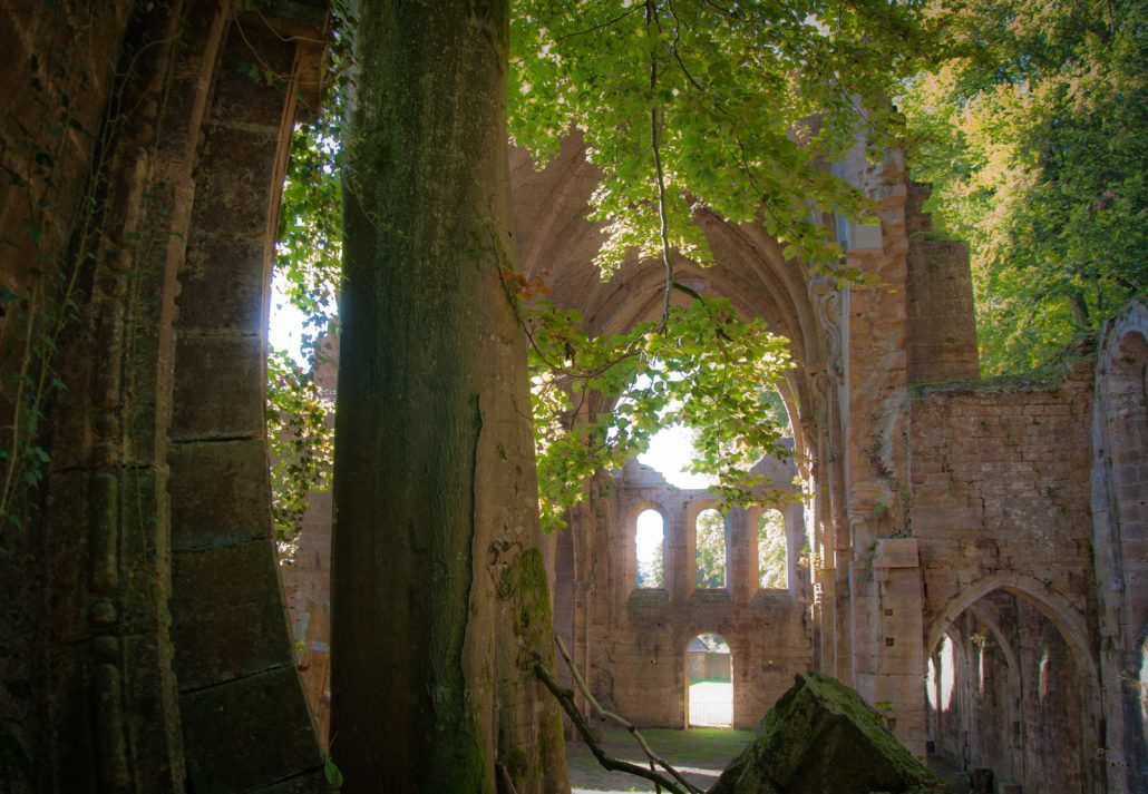 Abbaye des 3 fontaines 2