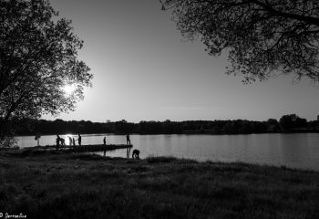 un soir au bord de l'eau.