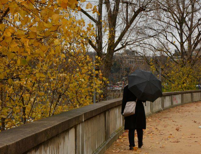 Un coin de parapluie