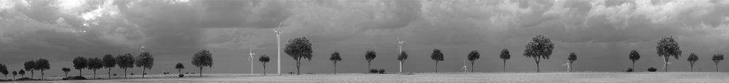 petit arbres et éoliennes