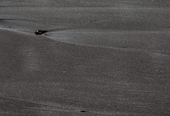 sable noir