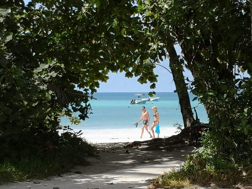 Derrière la végétation, la plage