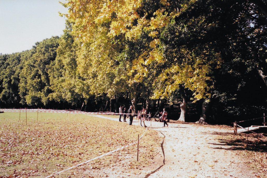 Walk around park