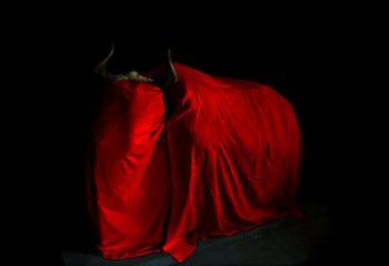 Vache rouge