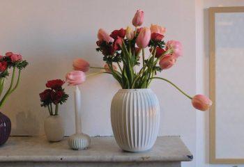 Flowers inside