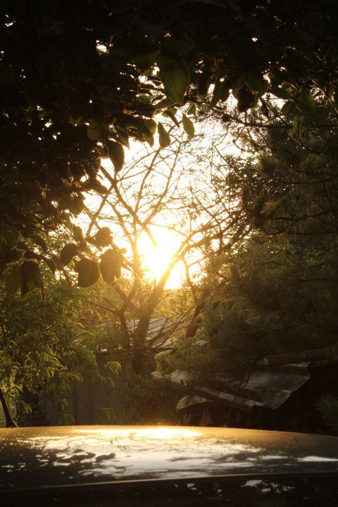 Sunrise Reflect
