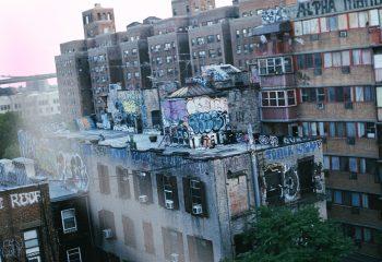 Lovin Brooklyn