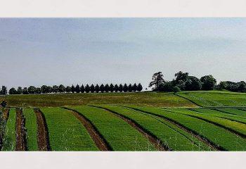 Geometrical #landscape