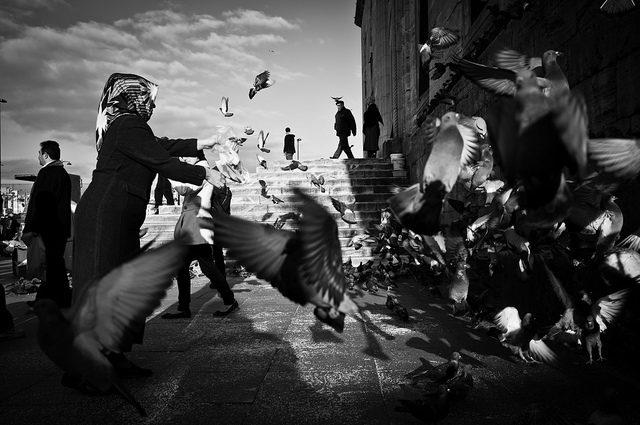 Istanbul, une dame et des pigeons.