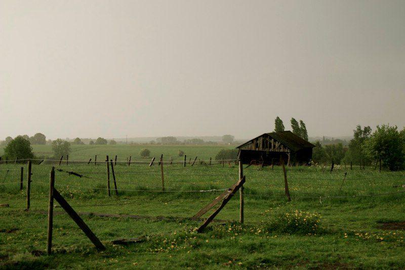 Rainy Country