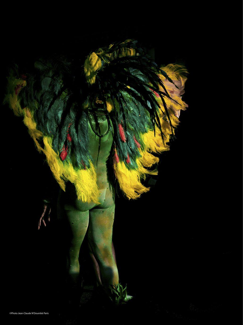 Un papillon dans la nuit