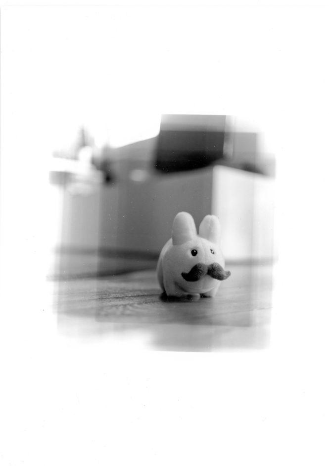Mini-rêve : Stach Labbit