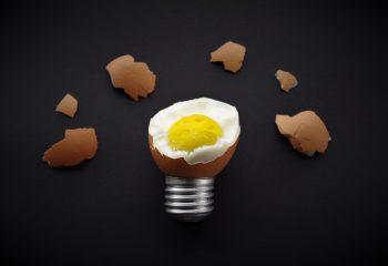 L'oeuf ou l'ampoule - Pas de photomontage