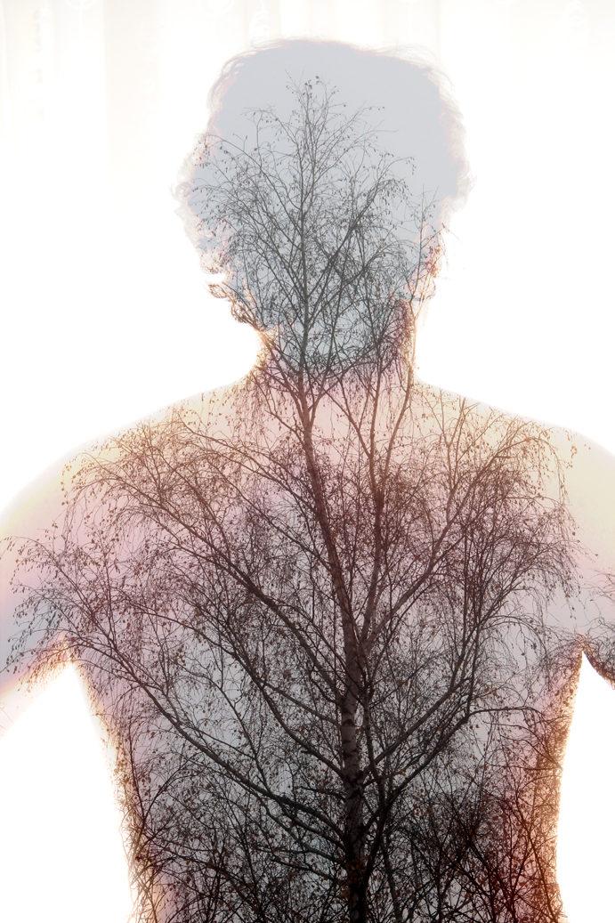 Back to the roots – la colonne vertébrale