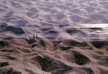 seuls sur le sable
