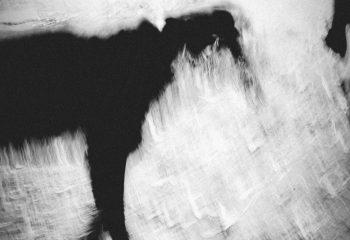 Night Dog (2/6)