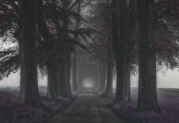 Destination inconnue