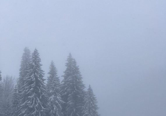 Polaroid serie 'Montagne'