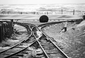 tracks of life