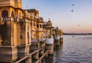 India[n] Life #15