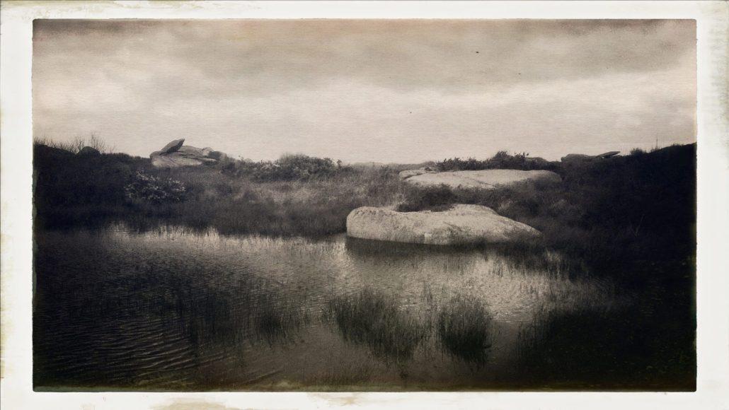 Marecage, Ile Renote