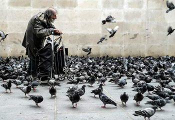 Giuseppe et les pigeons de Pompidou