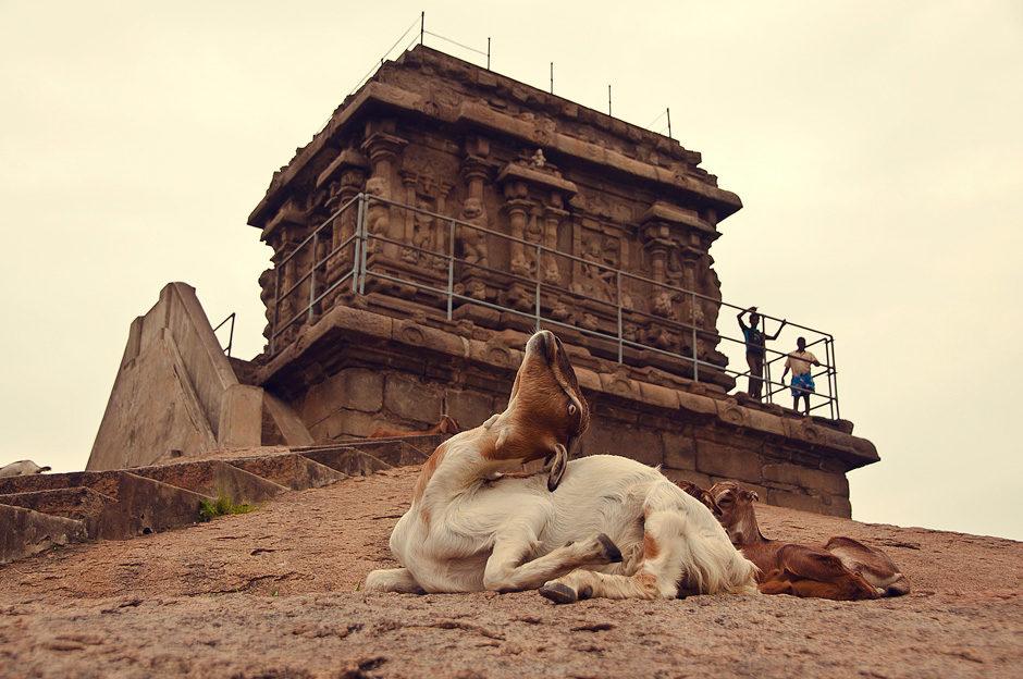 Mahabalipuram (Tamil Nadu, Inde)
