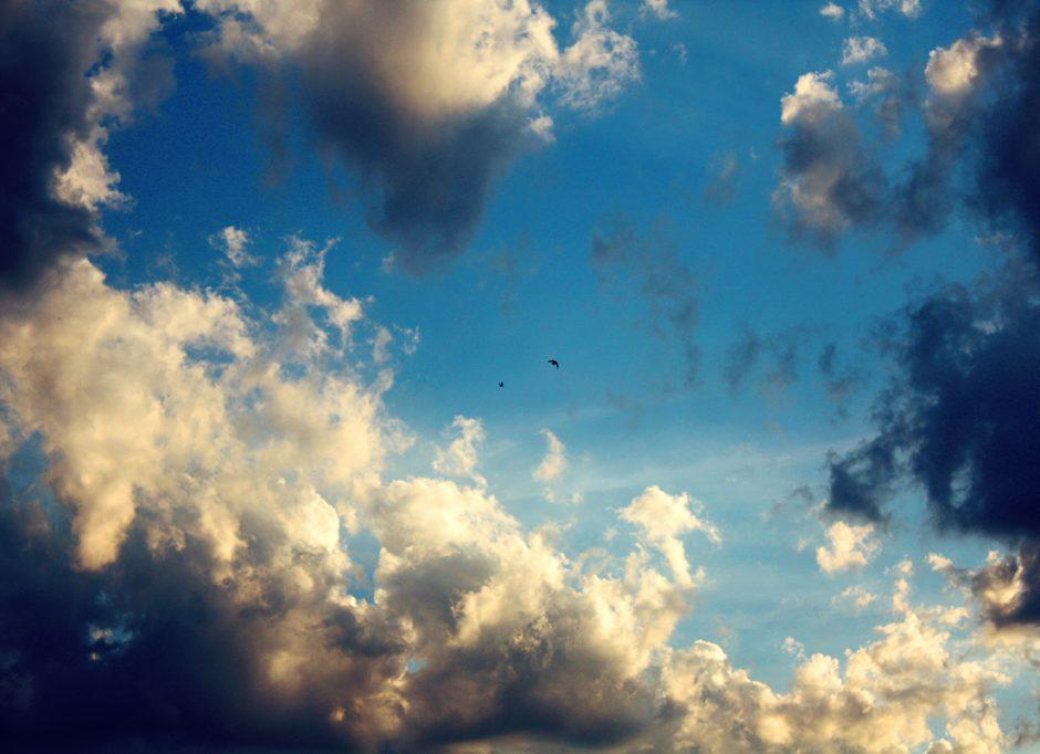 live in cloud-cuckoo-land
