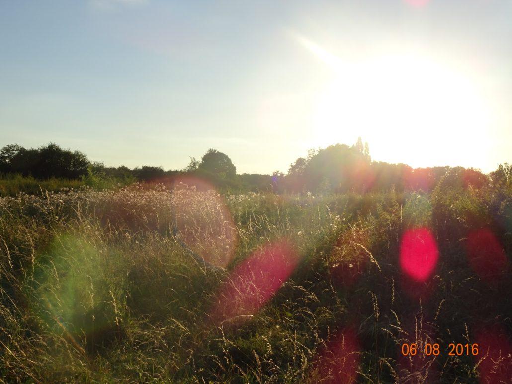 Éclat de soleil
