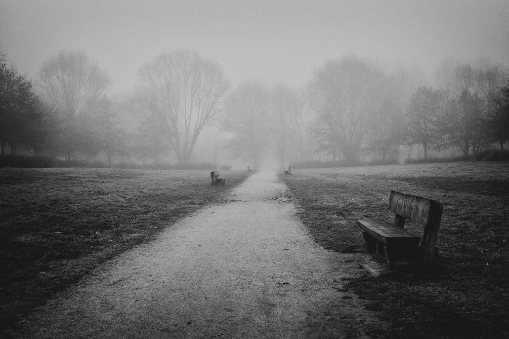 La brume