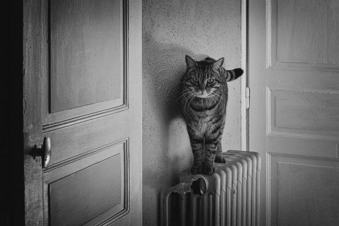 Entre deux porte...