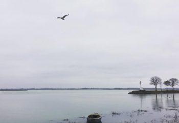 La Baie #001