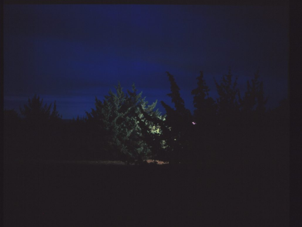 Lubitel by night