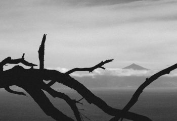 Sérénité du Mont Teide