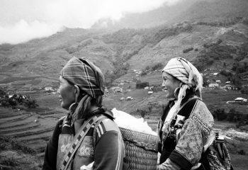 Les mamas dans les rizières