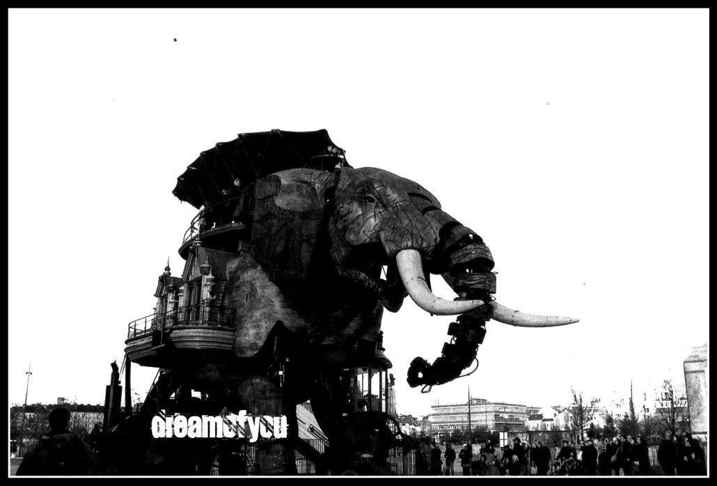 Le Parcours de l'Eléphant des Machines de l'Ile