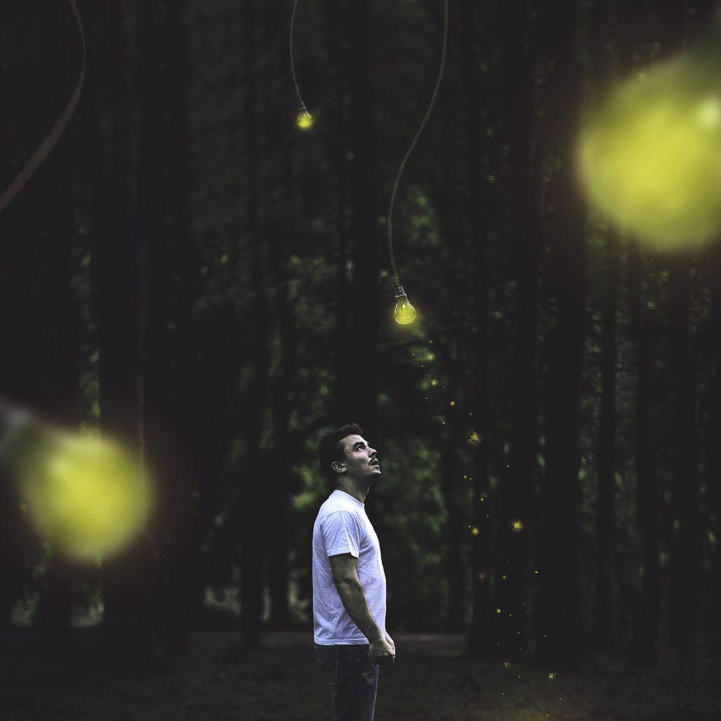 Les arbres de lumière