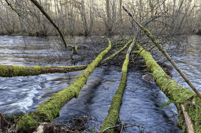Au fil de l'eau