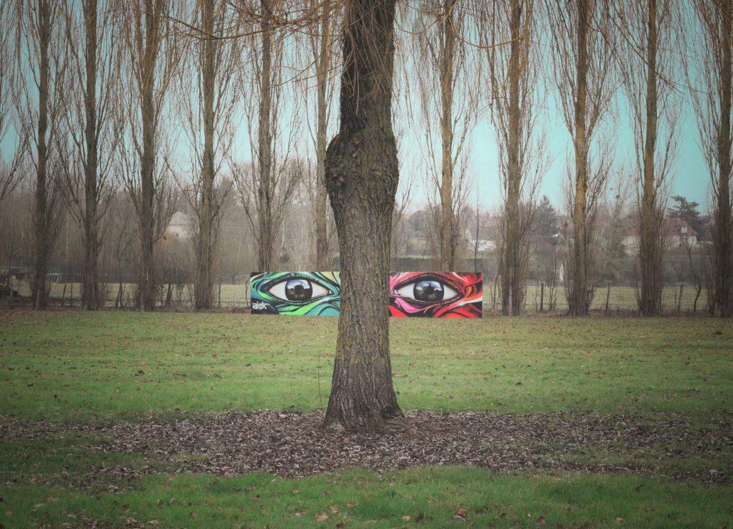les yeux sans visage 2