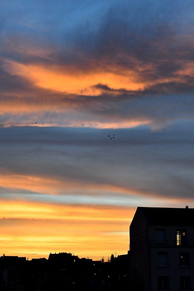 Pigeons volent ...