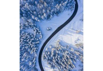 winter sinus