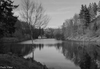 Balade à l'étang du Donnenbach